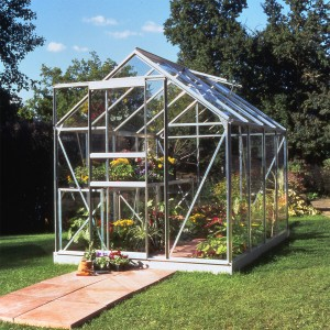 Halls Popular Greenhouse - 6ft x 8ft