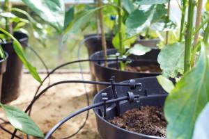 Irrigatia SOL-C12 Automatic Watering System